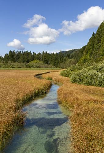 Naravni Rezervat Zelenci
