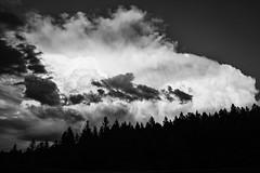 Colorado Thunderhead (BeerAndLoathing) Tags: dramaticsky usa rp blackwhite canon clouds thunderhead summer roadtrip trips storms sky rf24105mmf4lisusm august canoneosrp skies bw 2019 pagosaspringstrip colorado blackandwhite