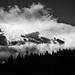 Colorado Thunderhead