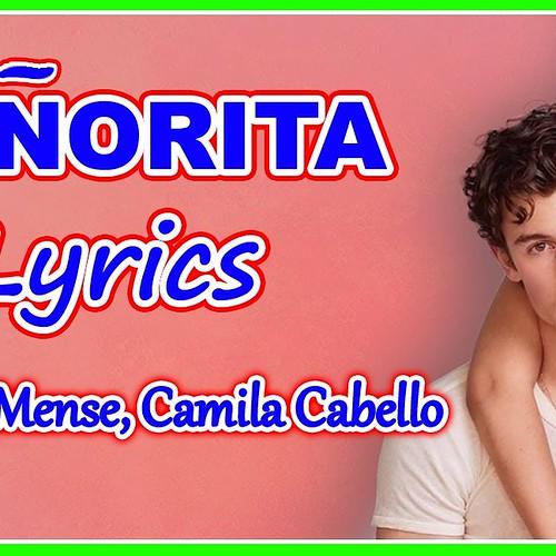 Shawn Mendes Camila Cabello fan photo
