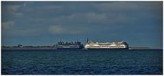The dark side and the bright side of the ferry (LeonardoDaQuirm) Tags: ship vessel schiff schip texel teso waddenzee wattenmeer waddeneiland island denhelder westfriesischeinsel