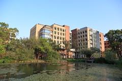 IMG_2000 (Ethene Lin) Tags: 台灣大學 藍天 積學館 醉月湖 水生植物 龍骨瓣莕菜 倒影