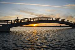 Build bridges not walls (josebrito21) Tags: pds pordosol sunset bridge goldenhour river streetphotography fotografiaderua silhuetas silhouette josebrito2 josébrito josébritophotography josébritofotografia josébritofotos josébritophotos josébritoimages water sky oneperson