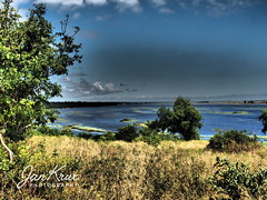 Chobe (Jan-Krux Photography - thx for 5Mio+ views) Tags: chobe river fluss national park botswana africa afrika safari landscape landschaft 4x4 baum tree wasser breit weit wide vast travel reisen adventure abenteuer olympus omd em1 olympus1240mmf28 dramatic