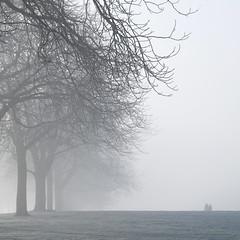 Sweet nothings (Arni J.M.) Tags: fog trees sweetnothings silhouettes winter people pair thelongwalk windsor england uk