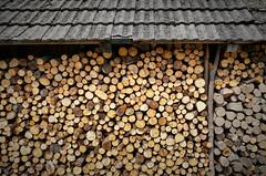 It will be harsh winter. (Siuloon) Tags: zima drzewo opał kształt structure lines tree dach sudety kudowazdrój górystołowe ciepło kominek