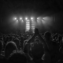 In concert. (marfis75) Tags: konzert concert gig publikum zuhörer zuhören listening audience stage music musik band entertainment stimmung mood musicians drum drums drummer schlagzeug schlagzeuger sticks spielen emotion freuen feiern party light lights bühne show set deus belgien antwerpern trix antwerpen cc creative commons