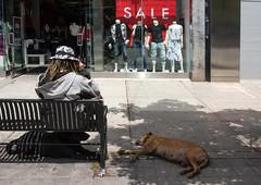 Sale, Toronto (klauslang99) Tags: klauslang streetphotography sale person dog poverty contrast