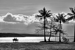 Two lonely people. (Ian Ramsay Photographics) Tags: portdouglas queensland australia lonely people paradise afternoon breeze swaying calm waters palmtrees thoughts