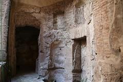 Foro Romano e Palatino_35