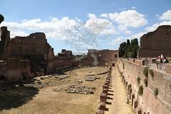 Foro Romano e Palatino_31