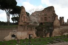 Foro Romano e Palatino_19