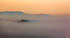 Nice foggy morning in Val D'Orcia (@Jarmila) Tags: ©jarmila val dorcia jarmila canon valdorcia crete senesi tuscany toscana landscape borgo italiano paesaggio travel nature outdoors cypress italy san quirico siena