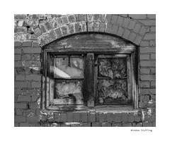 Window Stuffing (agianelo) Tags: wood brick paint peeling cracked decay monochrome bw bn blackandwhite