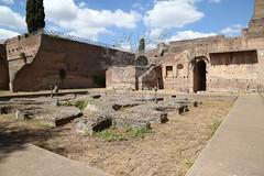 Foro Romano e Palatino_36