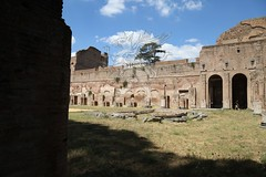 Foro Romano e Palatino_32