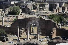Foro Romano e Palatino_27