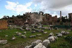 Foro Romano e Palatino_24