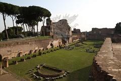 Foro Romano e Palatino_06