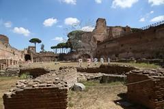 Foro Romano e Palatino_37