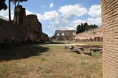 Foro Romano e Palatino_33