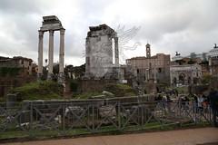 Foro Romano e Palatino_23