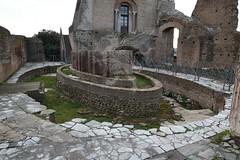Foro Romano e Palatino_14