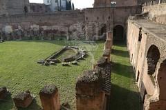 Foro Romano e Palatino_05