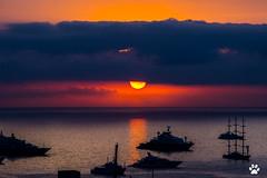 Baie de Monaco (Mc Mas) Tags: bateau leverdesoleil monaco navire port yachtshow