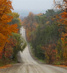 Rolling Country Road in Autumn (scilit) Tags: road countryroad dirtroad hills hilly mist fog trees foliage colorful orange green yellow rollercoasterride ontario earlyautumn fall ride scenery landscape forest dreams landscapedreams haze misty hazy foggy daarklands paysage