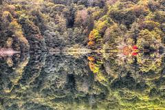 Croatian Color Mirror (orkomedix) Tags: canon eosr rf24105f4l croatia plitvice lake national park water reflection reflexion mirror autumn fall colors outdoor phototrip trees leaves