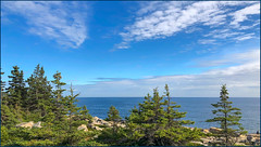 On the Schoodic Penninsula (Timothy Valentine) Tags: 0919 clichésaturday camera2 vacation maine trees ocean sky 2019 therockycoast winterharbor unitedstatesofamerica