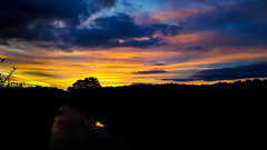 20190928_071206.jpg (CitizenOfSeoul) Tags: naturfotografie sky sunrise spaziergang gassirunde morgengrauen himmel farben sonnenaufgang himmelsfarben naturephotography morgens natur 03lichtundzeit galxys8