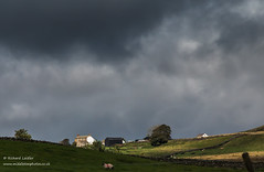 Greenhills Farm, Harwood, Upper Teesdale in Dramatic Light 1 (Richard Laidler) Tags: aonb agriculture areaofoutstandingnaturalbeauty buildings countydurham darkclouds darksky dramaticlight earlyautumn farm farmhouse farming globalgeopark harwood hillfarm moody northeastengland northpenninesaonb pennine stormysky sunshine teesdale teesdalelandscape upper upperteesdale white whitewashed