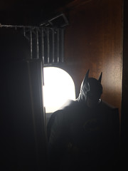 The Caped Crusadeer (misterperturbed) Tags: lifx mezco mezcoone12collective sovereignknight blue batman dccomics pxexclusive one12collective