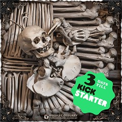 We have a winner for our 3D printed monstrance sculpture giveaway!! Check your inbox, as we have e-mailed them to ask where to send it. Congratulations, and thank you to everyone who participated. We will definitely be doing this again! . In the mean time (Sedlec Ossuary Project) Tags: sedlecossuaryproject sedlec ossuary project sedlecossuary kostnice kutnahora kutna hora prague czechrepublic czech republic czechia churchofbones church bones skeleton skulls humanbones human mementomori memento mori creepy travel macabre death dark historical architecture historicpreservation historic preservation landmark explore unusual mechanicalwhispers mechanical whispers instagram ifttt