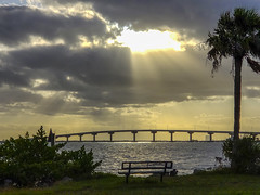 Harmony (in Explore) (mimsjodi) Tags: harmony bridge cellphone indianriverlagoon sunrise challenge groupchallenge clouds sky tree bench palmtree titusvillefl amaxbrewerbridge crepuscularrays