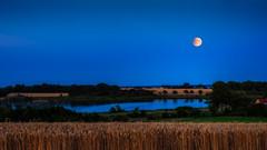 Moonrise, Selsoe lake (ibjfoto) Tags: danmark denmark ibjensen ibjfoto natur selsoelake selsø selsøsø sjælland zealand lake moon moonrise måneopstigning sø vand water