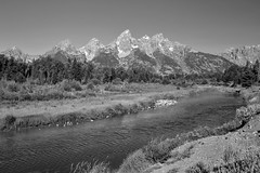 Gran Tetón National Park. Wyoming (Mario & Debbie) Tags: photography photographicspot moose wyoming parquenacional anseladams monochromatic blackinegro montaña naturaleza paisaje nature landmark iconic scenic rivers mountains blackwhite monochrome western west nationalparks jacksonhole