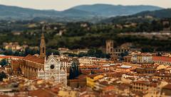 Basílica de la Santa Cruz, Florencia (diego.gabaldon) Tags: italia florencia basílica santa cruz iglesia religión tilt shift effect