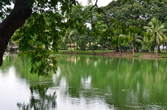 Lumpini Park Lake (itchypaws) Tags: bangkok thailand 2018 lumpini park lumphini lake pond south east asia