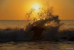 Waves 2.... (Joe Hengel) Tags: waves2 waves water watchingthesunrise de delaware rehobothbeach rehobothbeachde sussexcounty lowerslowerdelaware lsd horizon sunlight sun summer summertime rocks rock splash atlanticocean delmarva beach morning morninglight outdoor ocean