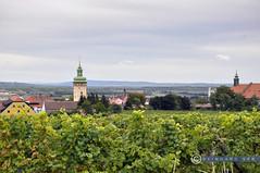 Weinviertel Niederösterreich Retz_DSC0488 (reinhard_srb) Tags: weinviertel niederösterreich retz weinberge weingarten rebstock weinbau rathaus turm altstadt stadt silhouette