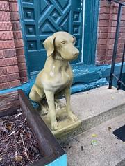 dog statue. orland park antique store. september 2019 (timp37) Tags: dog statue orland park antique store illinois september 2019