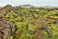 Of Moss, Mist, and Rugged Rocks (Bold Frontiers) Tags: landscape nature natural scene scenic scenery mountains hills rock stone rugged moss mossy plants vegetation flora organic sky clouds cloudy fog foggy mist misty atmosphere atmospheric environment environmental background backdrop iceland icelandic wanderlust travel tourism outside outdoor exterior beauty beautiful pretty surreal fantasy dreamy green red brown color colour vibrant