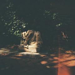 Broken Statue (Tom Ipri) Tags: mediumformat dianaf filmisnotdead philly filmphotography statues shotonfilm philadelphia 120film