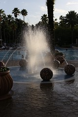 Hard Rock Hotel, Universal Orlando. (Andy Ziegler) Tags: orlando florida orlandoflorida travel canon6d vacation universalorlando fountain water pool backlighting palmtrees resort 50mm