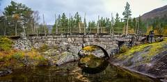 Auvervassåi gamle bru Bykle 280919 (Geir Daasvatn) Tags: auvervassåi oldbridge kulturminne oldroad bykle autumn