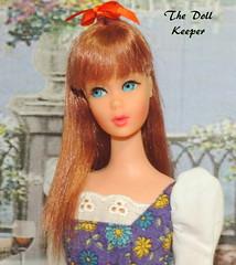 1967 Vintage Mod TNT Titian Barbie Doll (The doll keeper) Tags: 1967 vintage mod tnt titian barbie doll picture me pretty dress