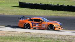 The Orange TAs (3 of 3) (Jungle Jack Movements (ferroequinologist) all righ) Tags: ta2 ta trans am australian motor racing series sydney motorsport park eastern creek nsw new south wales dodge challenger ford mustang chev chevrolet chevy camaro pass race speed car cars hottie track practice pole position times timing hard competition event saloon sports racer driver mechanic engine oil petrol build fast faster fastest grid circuit drive helmet marshal starter sponsor number class classic tim tritton greg willis christopher formosa orange muscle